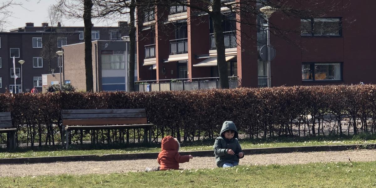 Koude dagen in het park